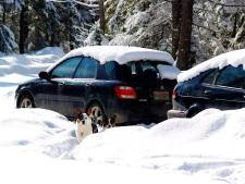 BRRR.SHADOW.SNOW