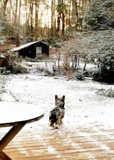 JOLIE.SNOW.WATCH